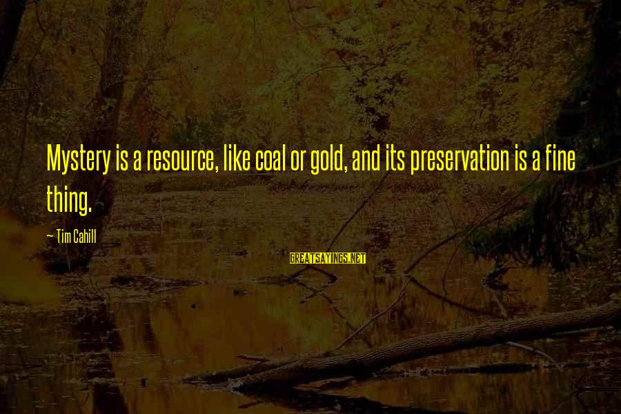 Media And Stereotypes Sayings By Tim Cahill: Mystery is a resource, like coal or gold, and its preservation is a fine thing.