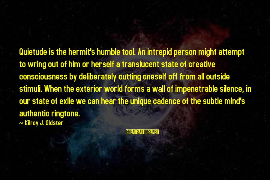 Meditations Sayings By Kilroy J. Oldster: Quietude is the hermit's humble tool. An intrepid person might attempt to wring out of