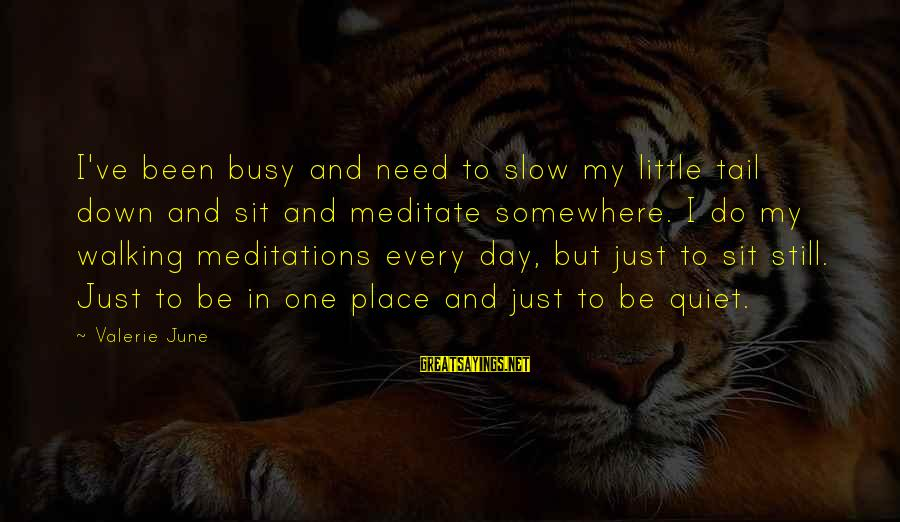 Meditations Sayings By Valerie June: I've been busy and need to slow my little tail down and sit and meditate