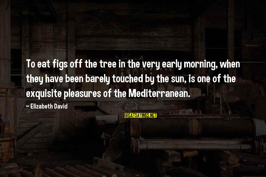 Mediterranean's Sayings By Elizabeth David: To eat figs off the tree in the very early morning, when they have been