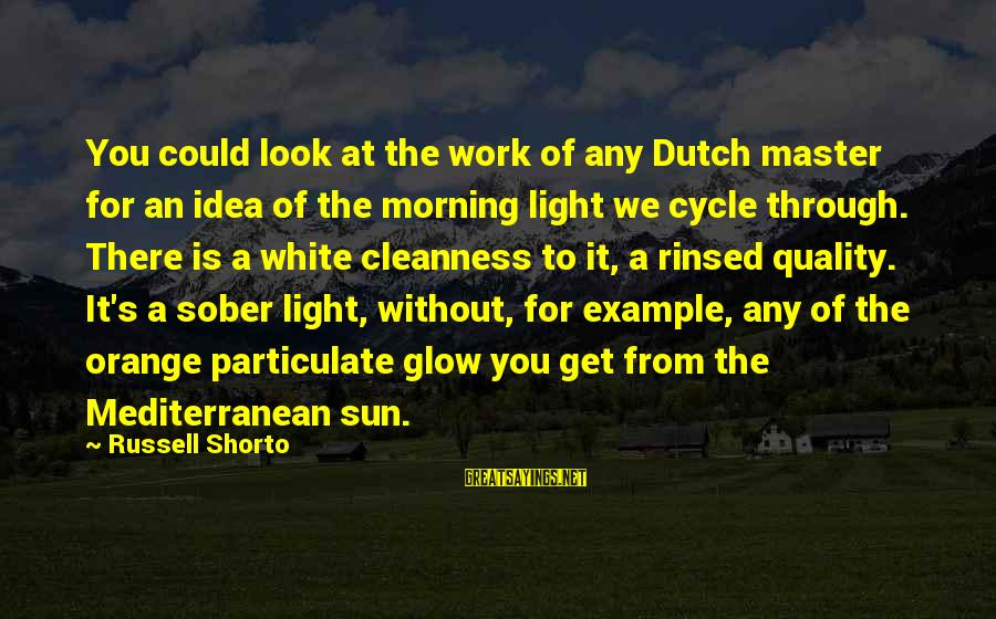 Mediterranean's Sayings By Russell Shorto: You could look at the work of any Dutch master for an idea of the