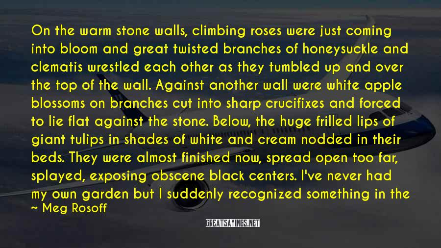 Meg Rosoff Sayings: On the warm stone walls, climbing roses were just coming into bloom and great twisted