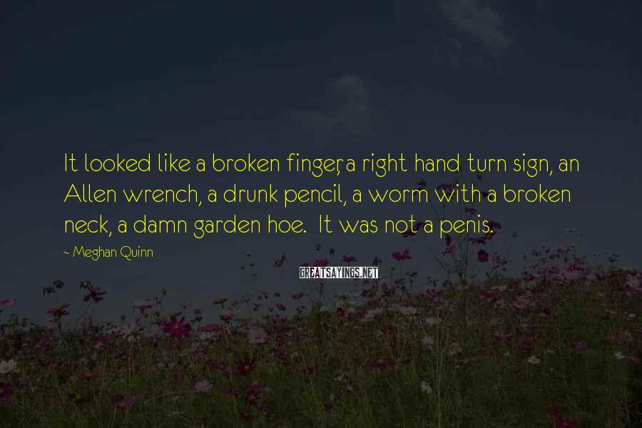Meghan Quinn Sayings: It looked like a broken finger, a right hand turn sign, an Allen wrench, a