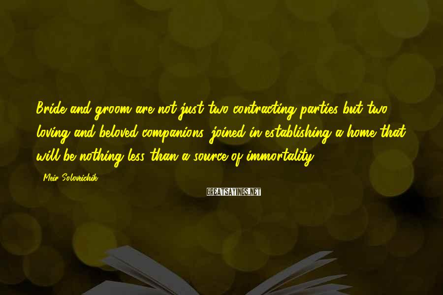 Meir Soloveichik Sayings: Bride and groom are not just two contracting parties but two loving and beloved companions,