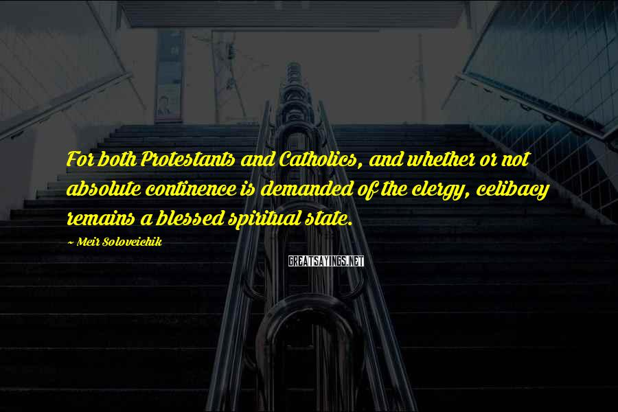 Meir Soloveichik Sayings: For both Protestants and Catholics, and whether or not absolute continence is demanded of the