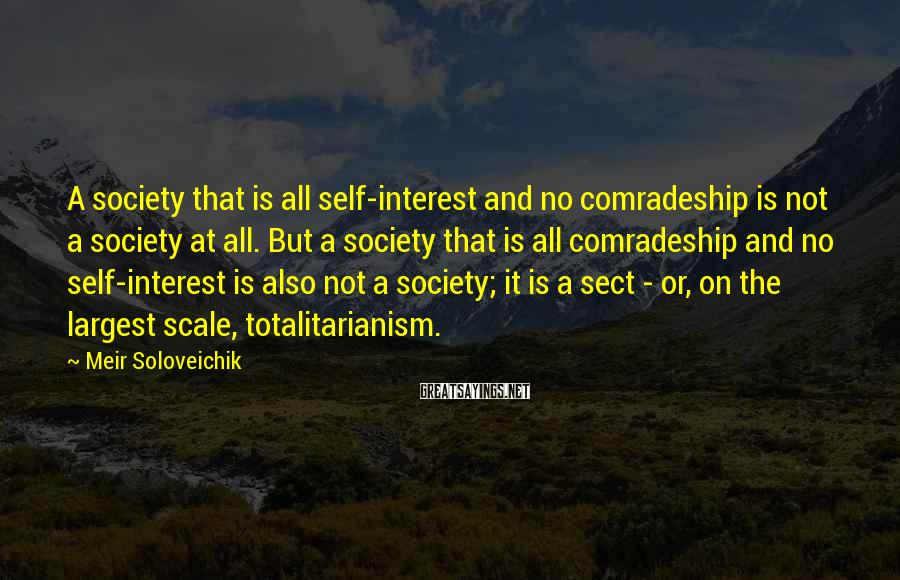 Meir Soloveichik Sayings: A society that is all self-interest and no comradeship is not a society at all.