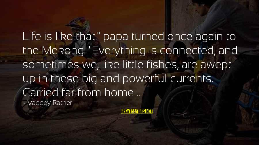 """Mekong Sayings By Vaddey Ratner: Life is like that."""" papa turned once again to the Mekong. """"Everything is connected, and"""