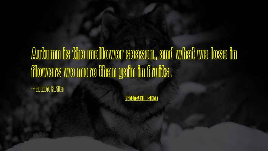 Mellower Sayings By Samuel Butler: Autumn is the mellower season, and what we lose in flowers we more than gain