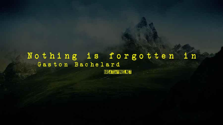 Memories Not Forgotten Sayings By Gaston Bachelard: Nothing is forgotten in the processes of idealization. Reveries of idealization develop, not by letting