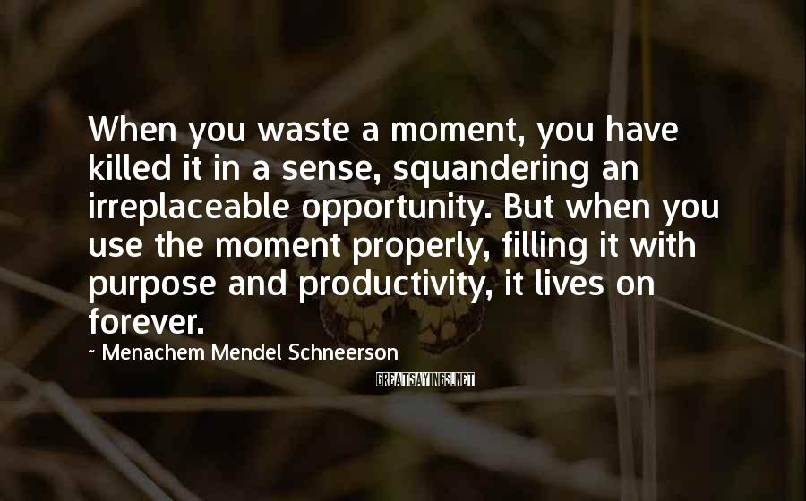 Menachem Mendel Schneerson Sayings: When you waste a moment, you have killed it in a sense, squandering an irreplaceable