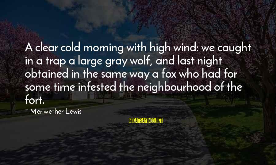 Meriwether Lewis Sayings By Meriwether Lewis: A clear cold morning with high wind: we caught in a trap a large gray
