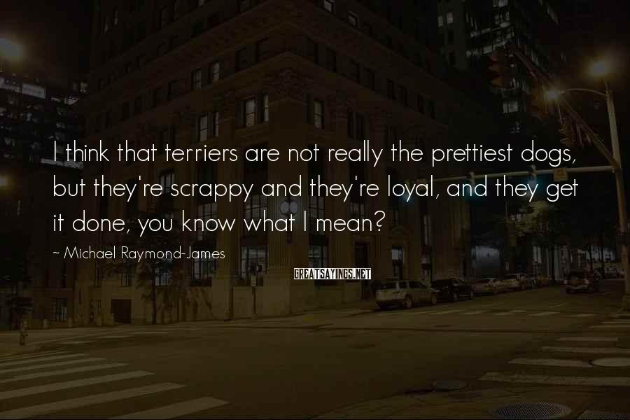 Michael Raymond-James Sayings: I think that terriers are not really the prettiest dogs, but they're scrappy and they're
