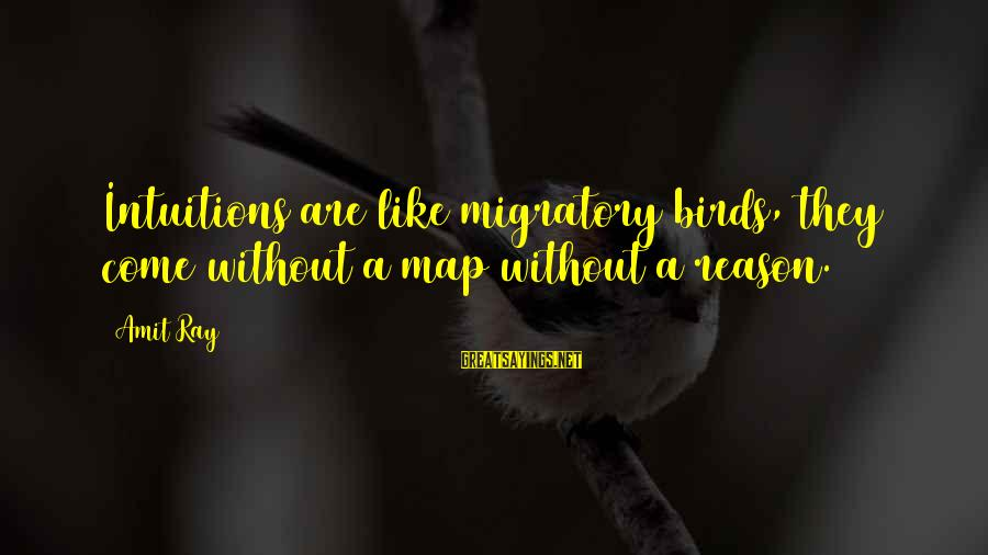 Migratory Birds Sayings By Amit Ray: Intuitions are like migratory birds, they come without a map without a reason.