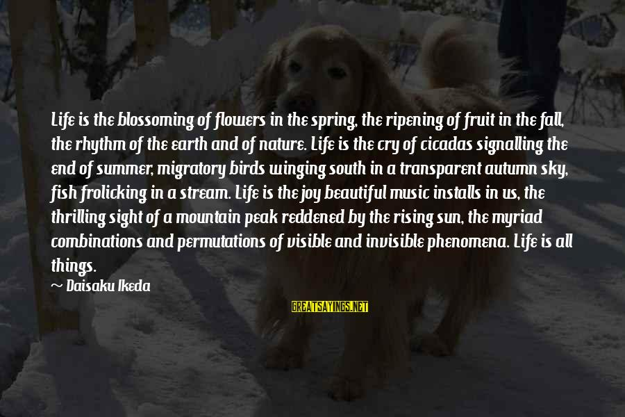 Migratory Birds Sayings By Daisaku Ikeda: Life is the blossoming of flowers in the spring, the ripening of fruit in the