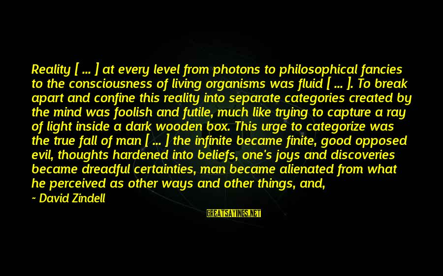 Mind Soul And Body Sayings By David Zindell: Reality [ ... ] at every level from photons to philosophical fancies to the consciousness