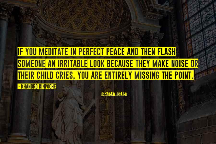 Missing My Child Sayings By Khandro Rinpoche: If you meditate in perfect peace and then flash someone an irritable look because they