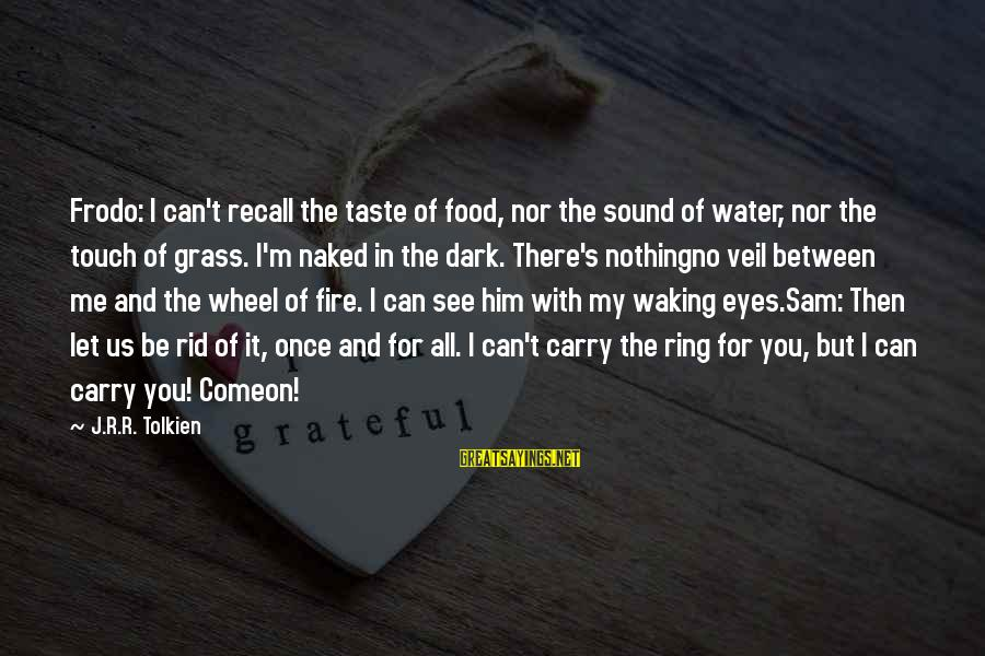 M'lord Sayings By J.R.R. Tolkien: Frodo: I can't recall the taste of food, nor the sound of water, nor the