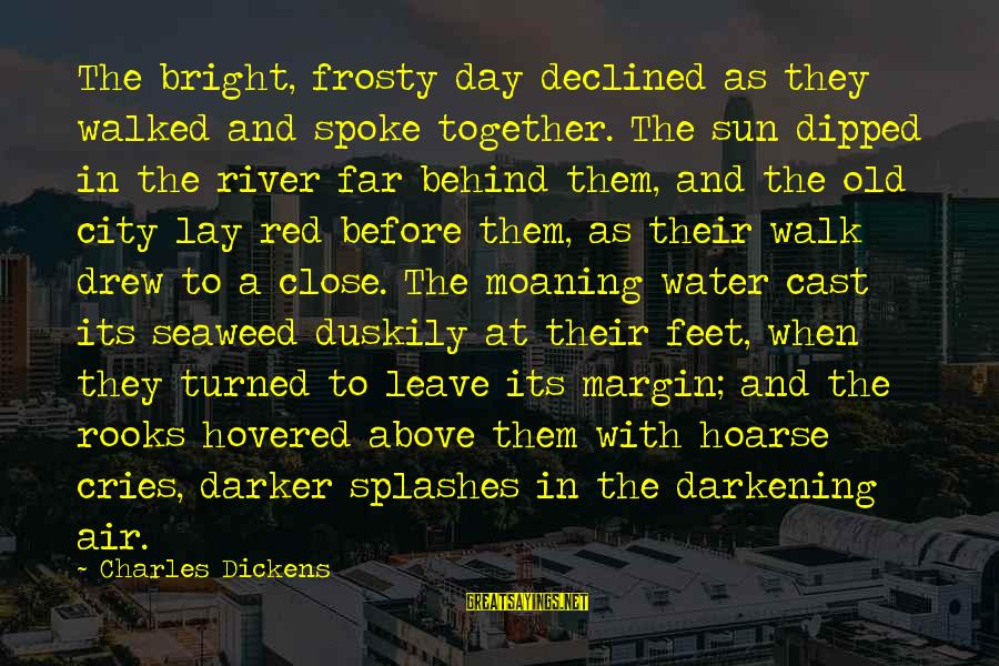 Moaning Sayings By Charles Dickens: The bright, frosty day declined as they walked and spoke together. The sun dipped in