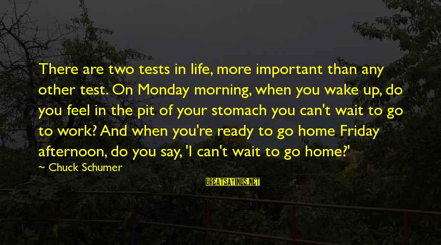Monday Afternoon Sayings By Chuck Schumer: There are two tests in life, more important than any other test. On Monday morning,