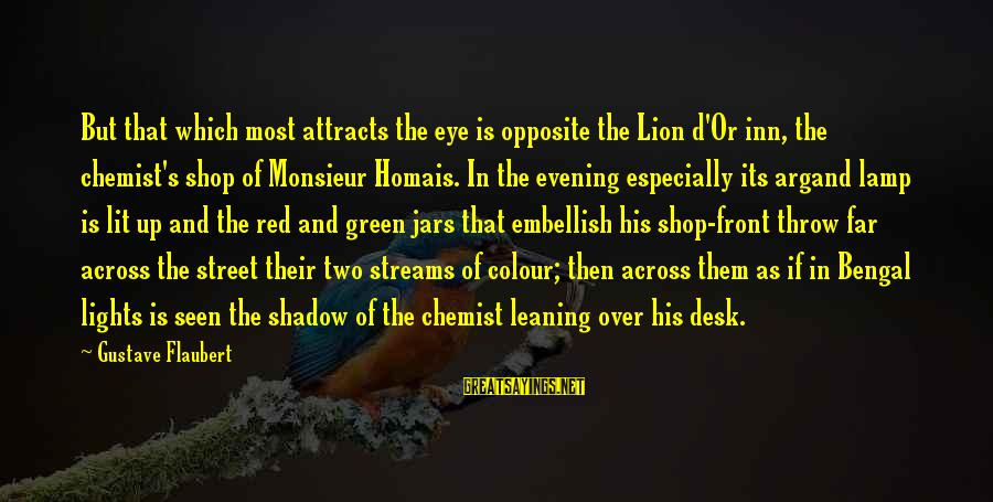 Monsieur Homais Sayings By Gustave Flaubert: But that which most attracts the eye is opposite the Lion d'Or inn, the chemist's