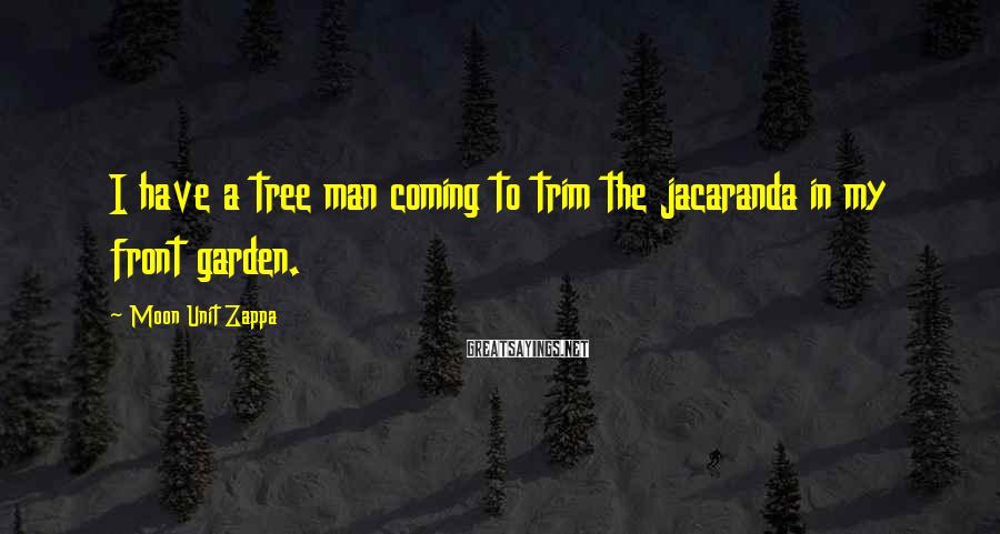 Moon Unit Zappa Sayings: I have a tree man coming to trim the jacaranda in my front garden.