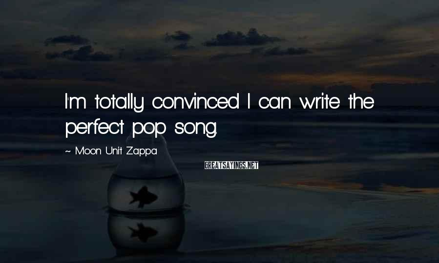 Moon Unit Zappa Sayings: I'm totally convinced I can write the perfect pop song.