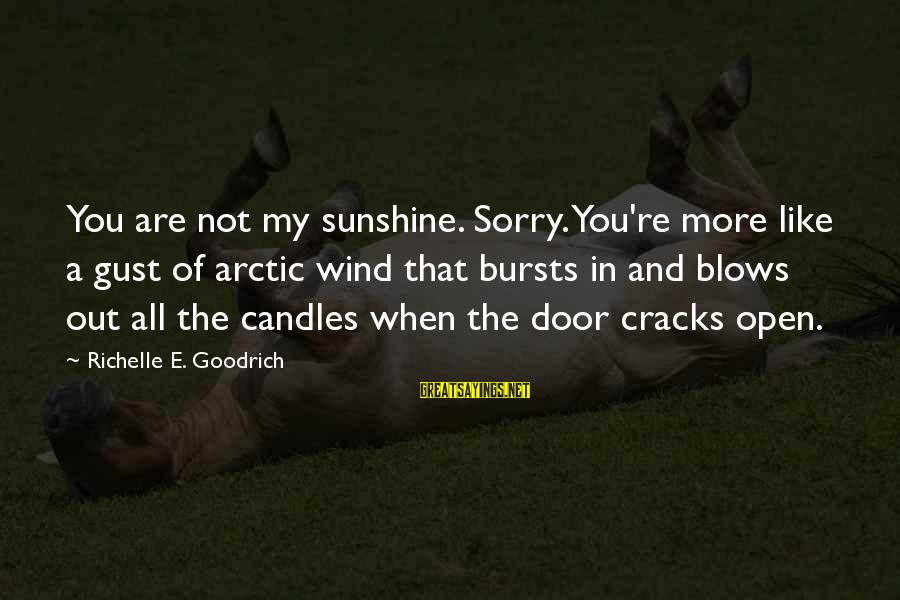 More Fool You Sayings By Richelle E. Goodrich: You are not my sunshine. Sorry. You're more like a gust of arctic wind that