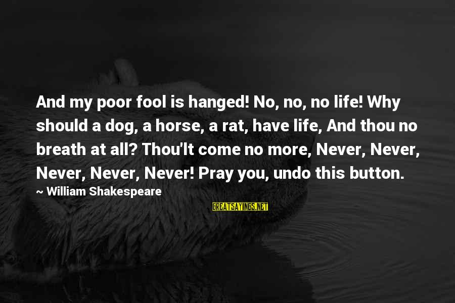 More Fool You Sayings By William Shakespeare: And my poor fool is hanged! No, no, no life! Why should a dog, a