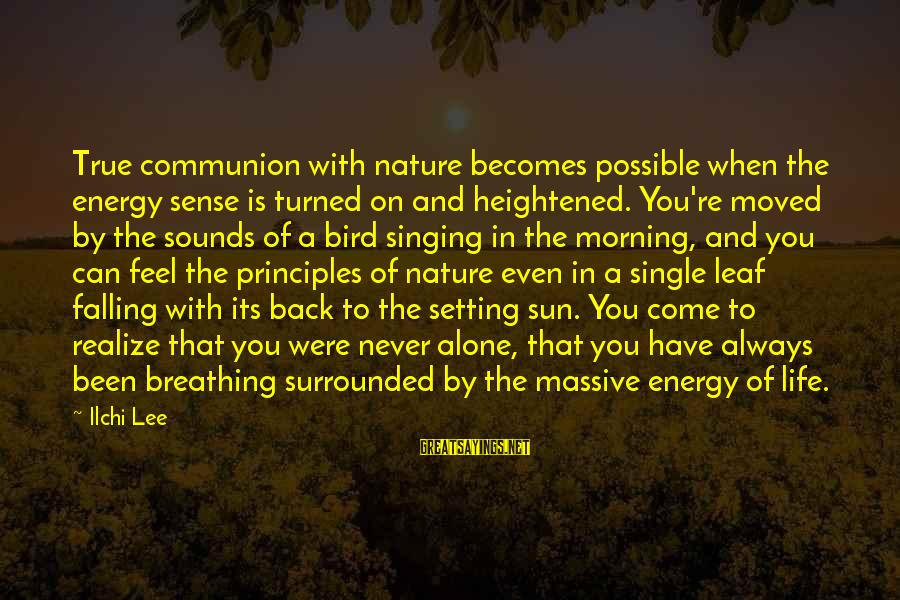 Morning And Nature Sayings By Ilchi Lee: True communion with nature becomes possible when the energy sense is turned on and heightened.