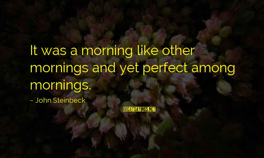 Morning And Nature Sayings By John Steinbeck: It was a morning like other mornings and yet perfect among mornings.