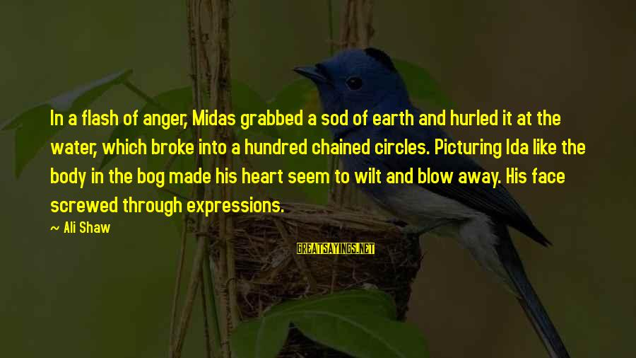 Mothers Day Dead Sayings By Ali Shaw: In a flash of anger, Midas grabbed a sod of earth and hurled it at