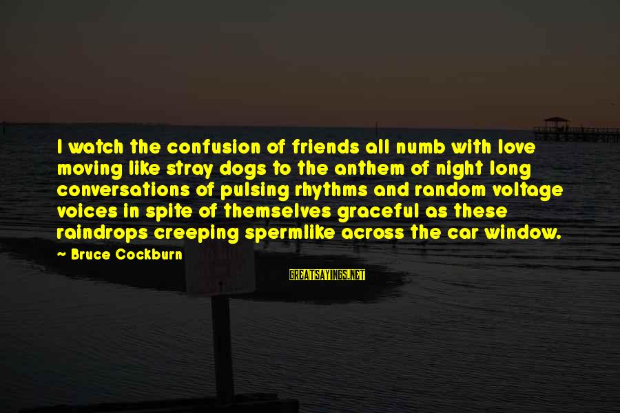 Moving On From A Friendship Sayings By Bruce Cockburn: I watch the confusion of friends all numb with love moving like stray dogs to