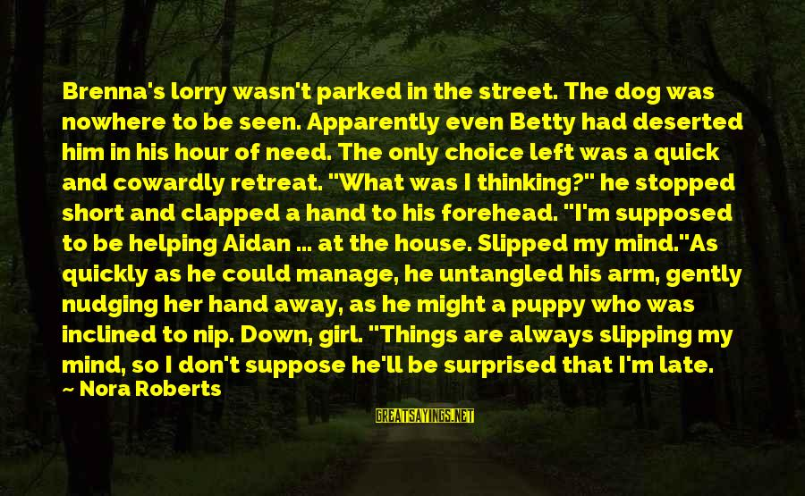 Mr. Lorry Sayings By Nora Roberts: Brenna's lorry wasn't parked in the street. The dog was nowhere to be seen. Apparently