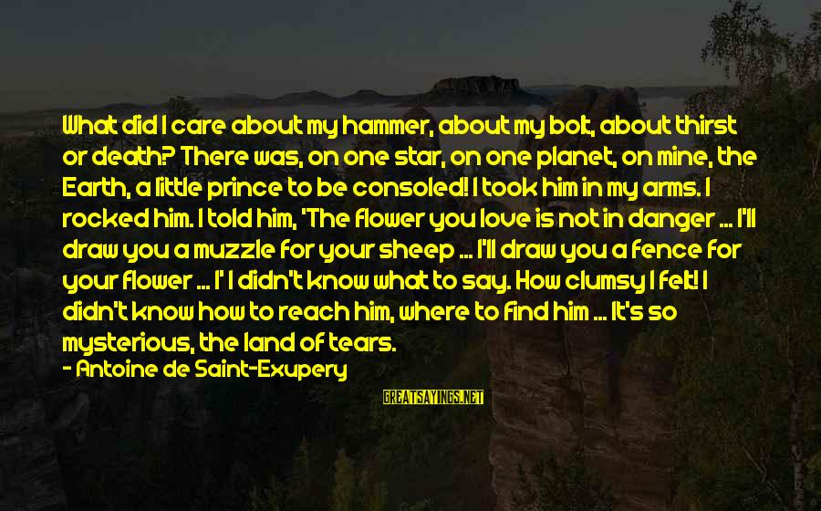 My Hammer Sayings By Antoine De Saint-Exupery: What did I care about my hammer, about my bolt, about thirst or death? There