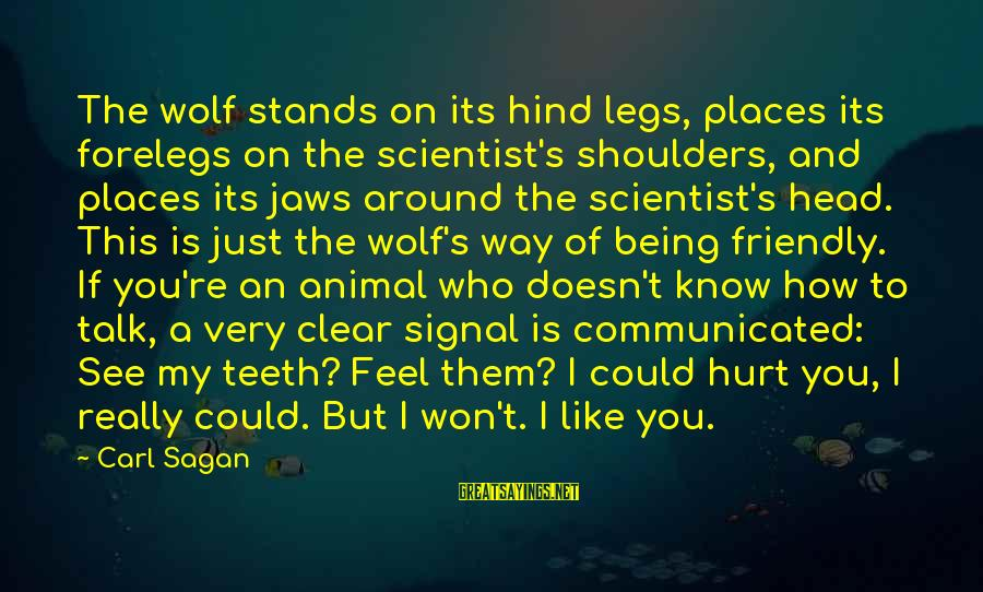 My Legs Feel Like Sayings By Carl Sagan: The wolf stands on its hind legs, places its forelegs on the scientist's shoulders, and