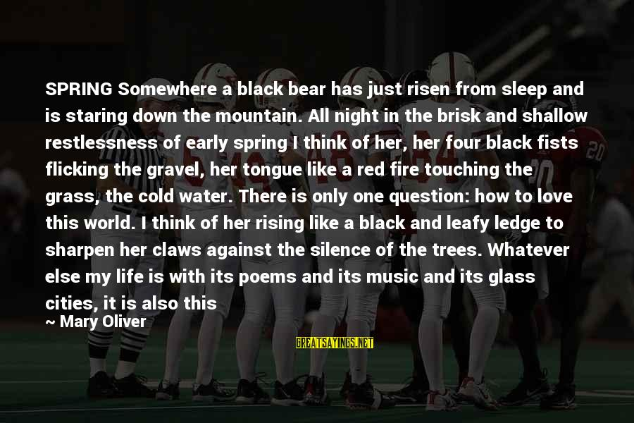 My Only One Love Sayings By Mary Oliver: SPRING Somewhere a black bear has just risen from sleep and is staring down the