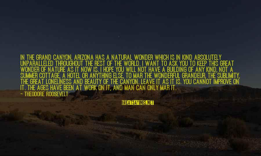 Nature Roosevelt Sayings By Theodore Roosevelt: In the Grand Canyon, Arizona has a natural wonder which is in kind absolutely unparalleled