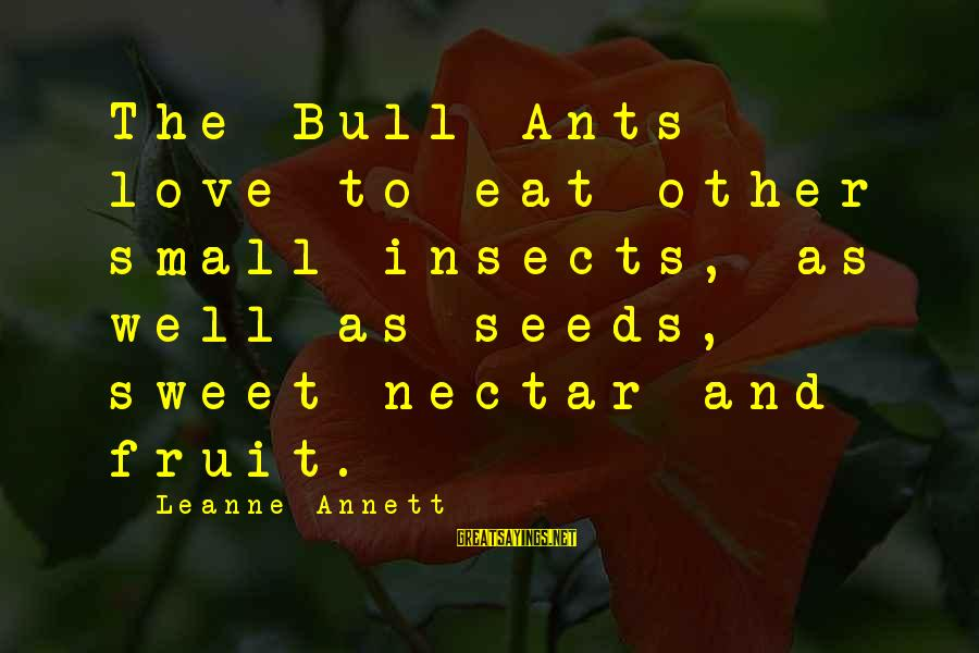 Nectar'd Sayings By Leanne Annett: The Bull Ants love to eat other small insects, as well as seeds, sweet nectar
