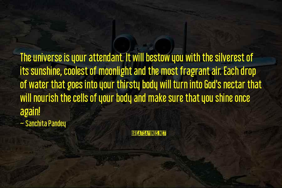 Nectar'd Sayings By Sanchita Pandey: The universe is your attendant. It will bestow you with the silverest of its sunshine,