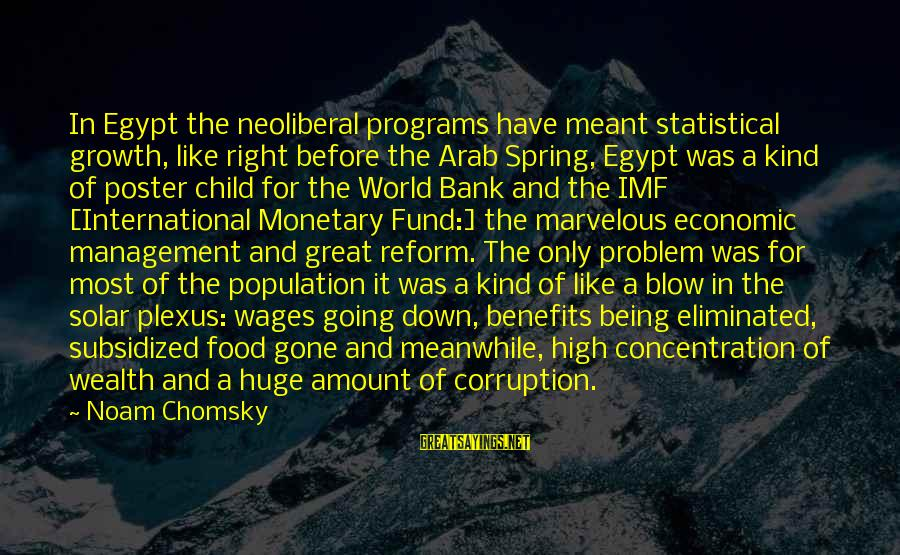Neoliberal Sayings By Noam Chomsky: In Egypt the neoliberal programs have meant statistical growth, like right before the Arab Spring,