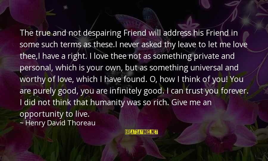 Never Give Up On Something You Love Sayings By Henry David Thoreau: The true and not despairing Friend will address his Friend in some such terms as