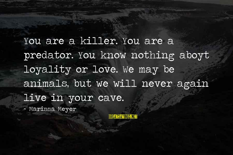 Never In Love Again Sayings By Marissa Meyer: You are a killer. You are a predator. You know nothing aboyt loyality or love.