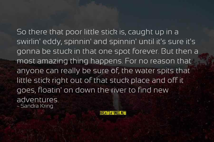 New Adventures Sayings By Sandra Kring: So there that poor little stick is, caught up in a swirlin' eddy, spinnin' and
