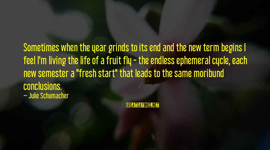 New Leads Sayings By Julie Schumacher: Sometimes when the year grinds to its end and the new term begins I feel