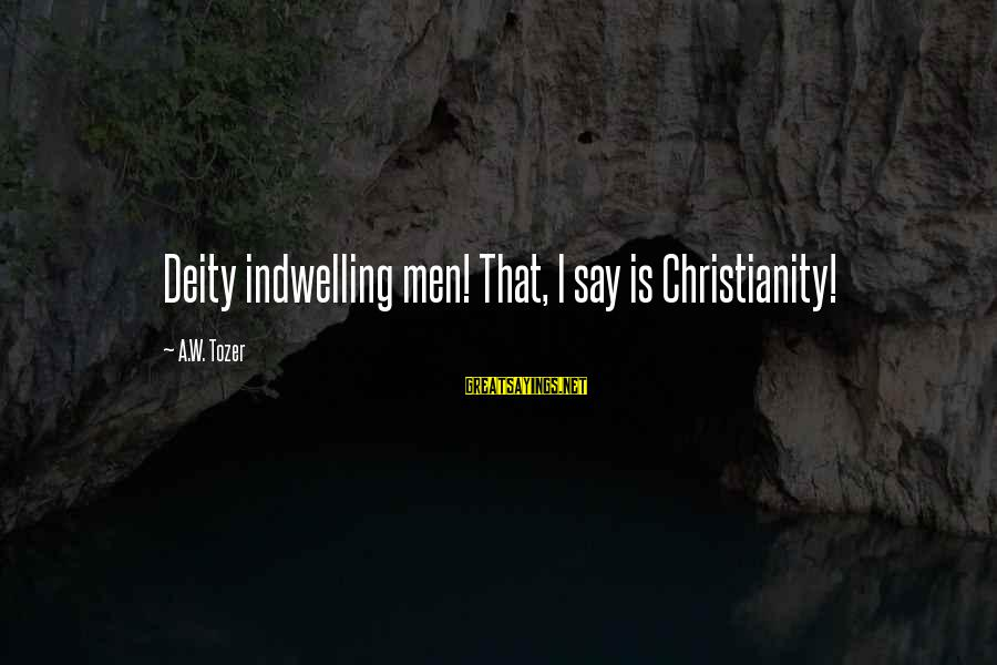 New Testament Absurd Sayings By A.W. Tozer: Deity indwelling men! That, I say is Christianity!
