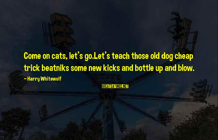 Newbie Sayings By Harry Whitewolf: Come on cats, let's go.Let's teach those old dog cheap trick beatniks some new kicks