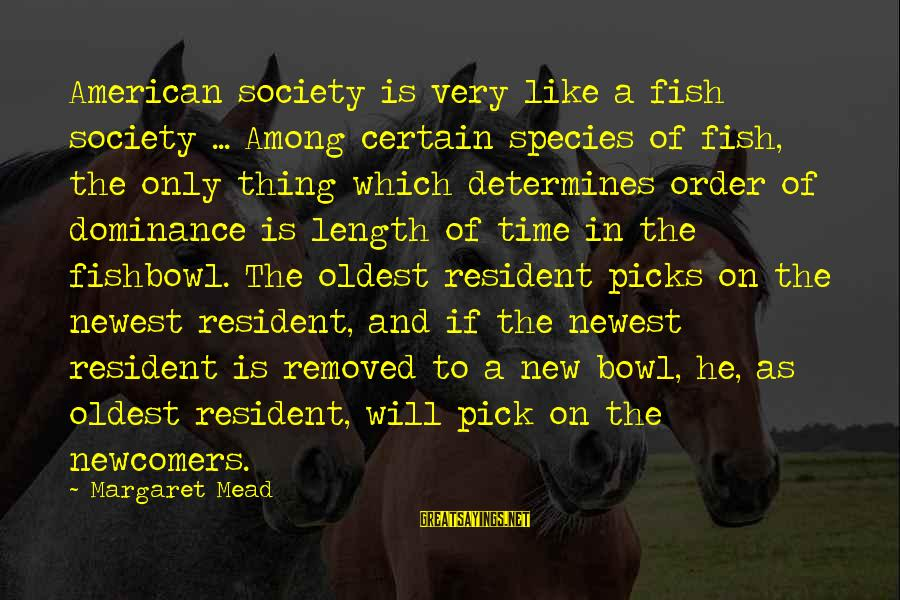 Newcomers Sayings By Margaret Mead: American society is very like a fish society ... Among certain species of fish, the