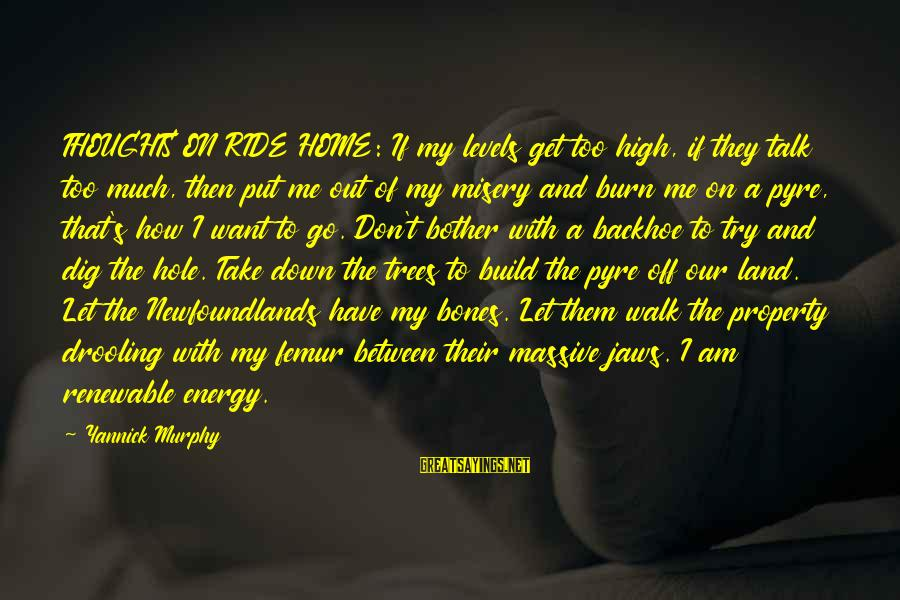 Newfoundlands Sayings By Yannick Murphy: THOUGHTS ON RIDE HOME: If my levels get too high, if they talk too much,