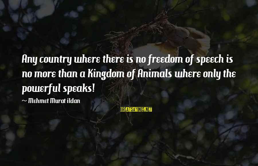No Freedom Of Speech Sayings By Mehmet Murat Ildan: Any country where there is no freedom of speech is no more than a Kingdom