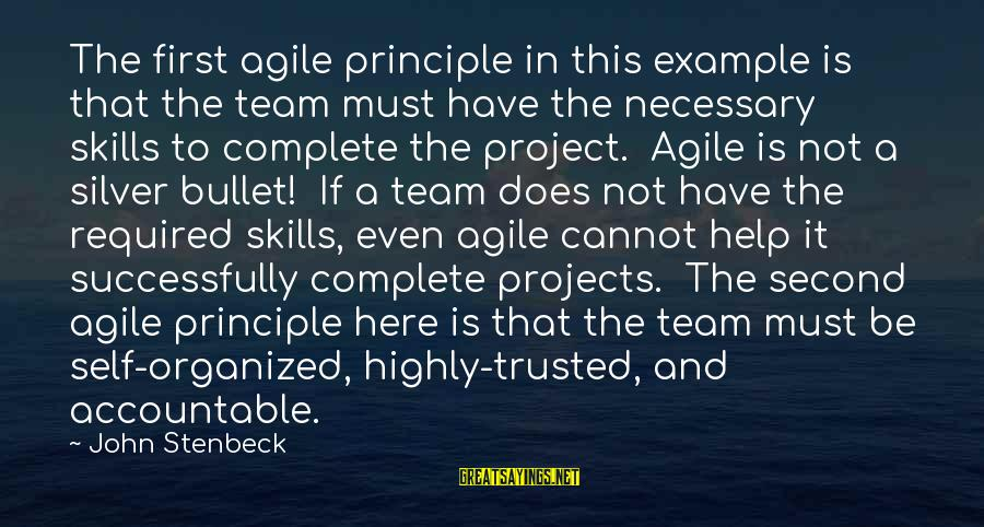 No Silver Bullet Sayings By John Stenbeck: The first agile principle in this example is that the team must have the necessary